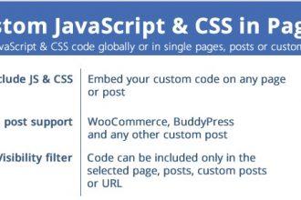 افزونه وردپرس جاوا اسکریپت و سی اس اس دلخواه در صفحات Custom JavaScript & CSS in Pages